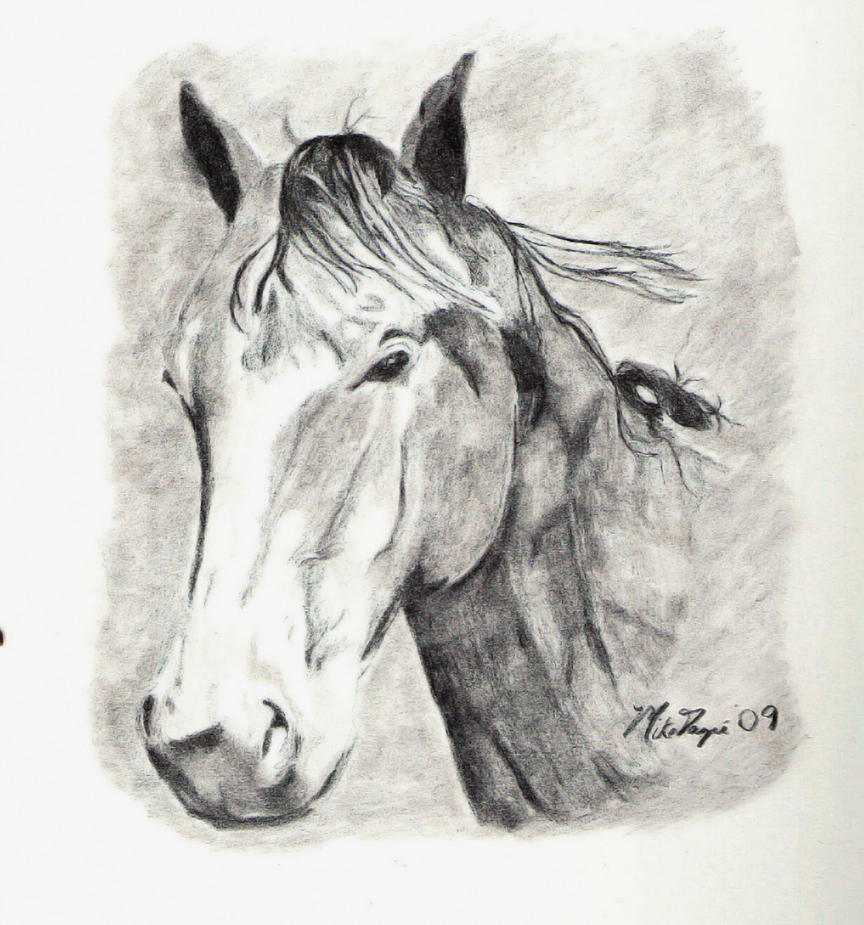 Horse (2009) by M-J-Gagne