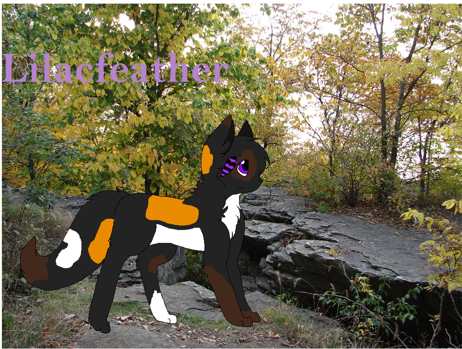 Lilacfeather by 0HoshiKuzu0