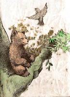 little bear meditates.