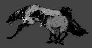royal hound