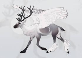 Caribou owl