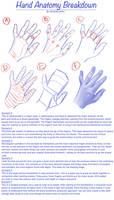 Hand Anatomy Breakdown by AshantiArt