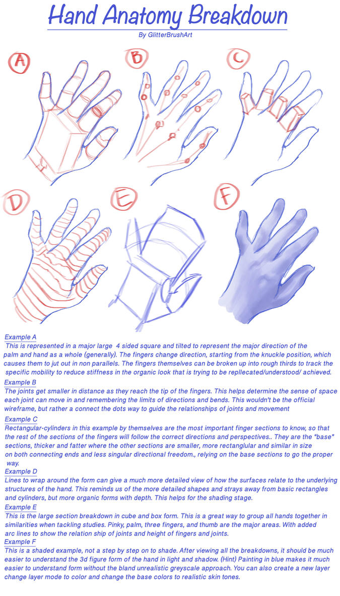 Hand Anatomy Breakdown by AshantiArt on DeviantArt