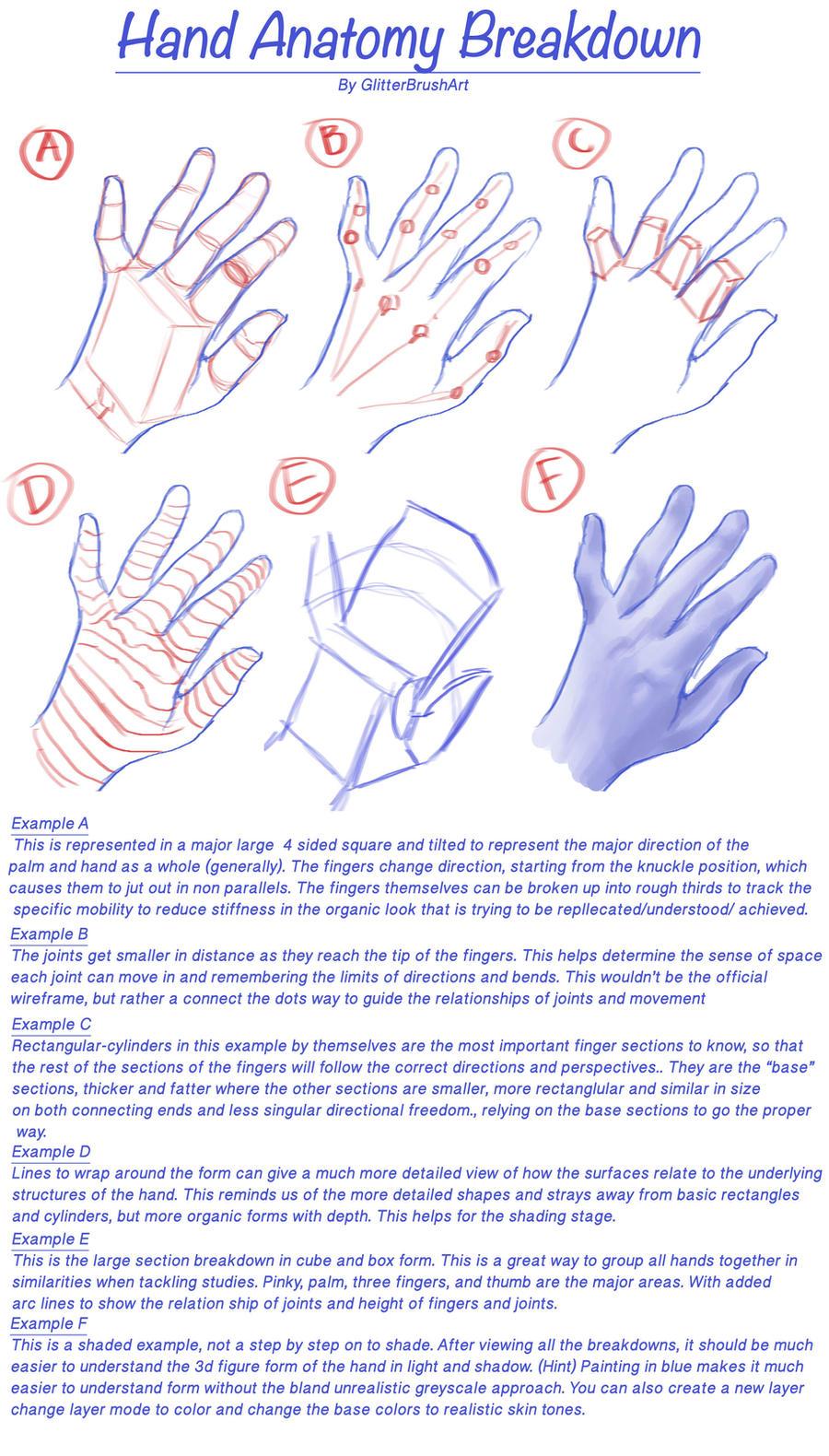 Hand Anatomy Breakdown by AshantiArt on DeviantArt