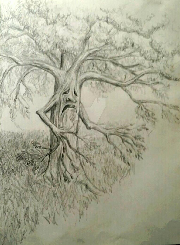 Tree by JeremyWelch