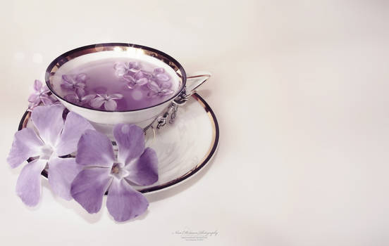 Cup of Secrets