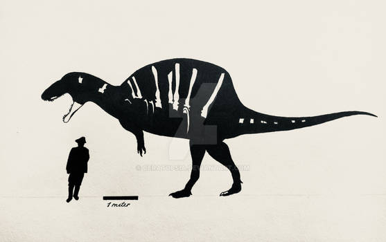 The Spinosaurus that could have been