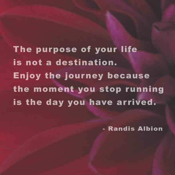 Purpose by randis