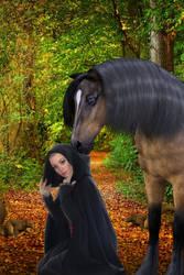 Shy forest mare by OlgaGodim