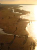 Sunset by NewMoon12