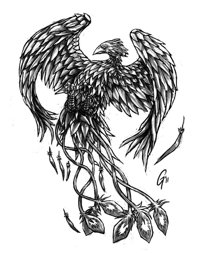 Black and White Phoenix Drawing