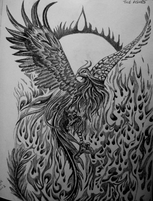 Pin Pencil Drawing Phoenix Bird Pictures on Pinterest