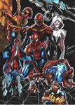 Spider Verse !!
