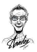 R.I.P Stan Lee My hero by tontentotza