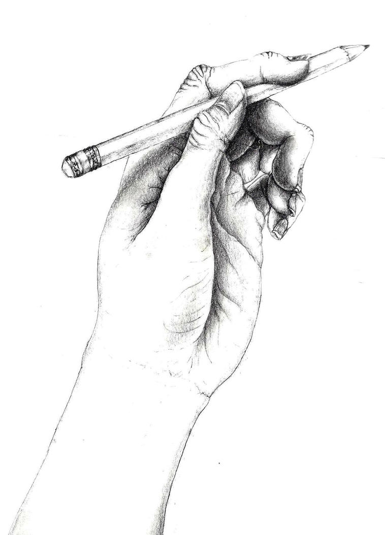 Pencil drawing of a hand holding