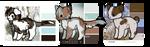 feline adopts | 1/3 OPEN | 100pts ea. by AnimalCartoons