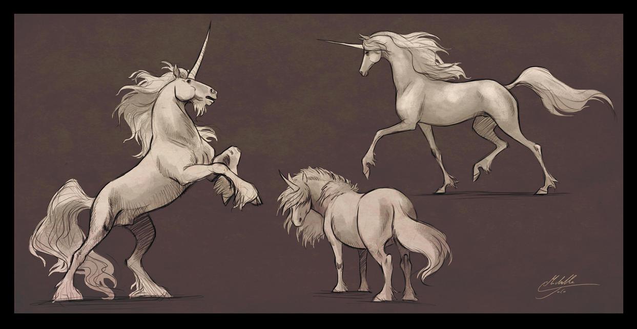 Unicorns by Manweri