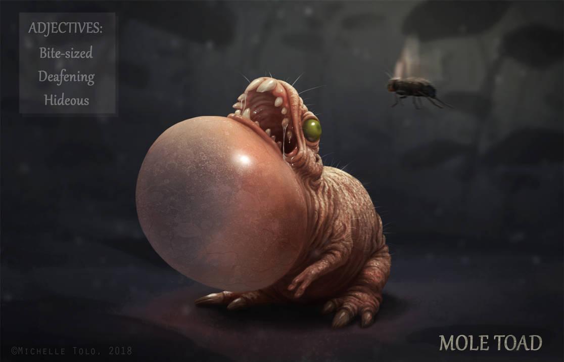 Adjective Creatures: Mole Toad