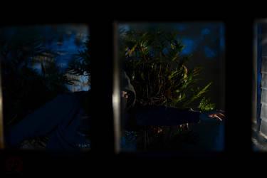 Retratos de cuarentena: Fuga