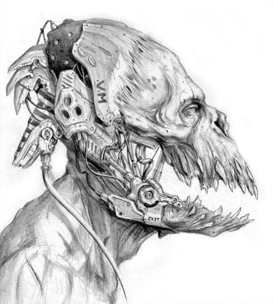 Skull12 by Verehin