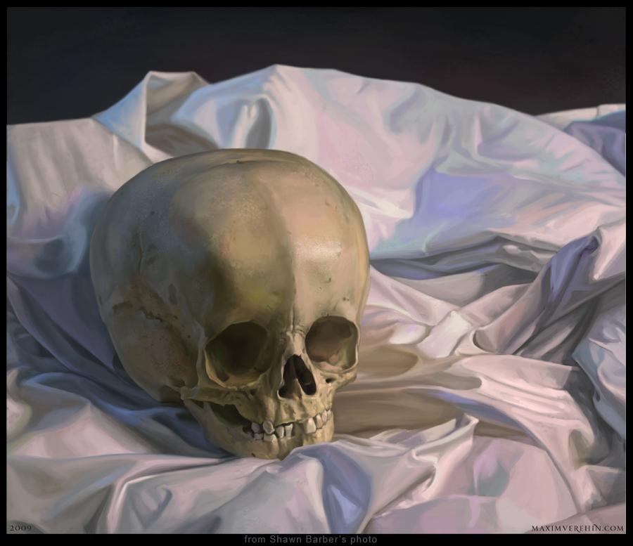 SkullStillLife by Verehin
