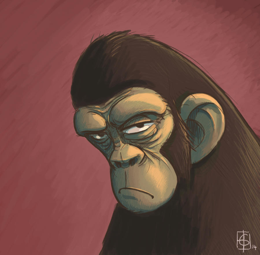 Chimp portrait by kookybird