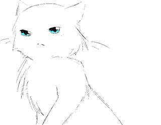 cloudtail sketch by felinefantasy