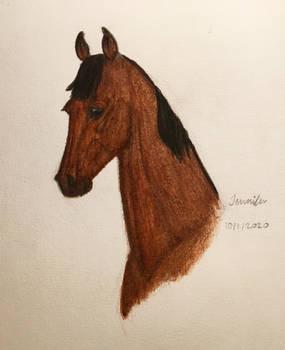 Watercolor Horse Portrait: Marit