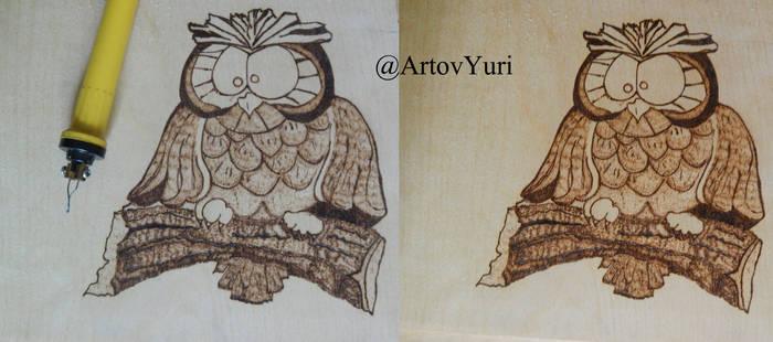 Owl Woodburnig