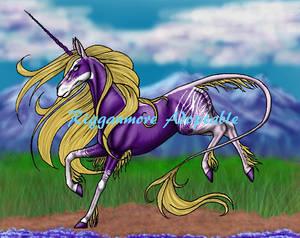 Unicorn - For Adoption