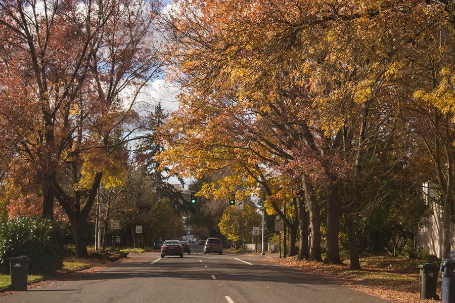 American street by Kdv42