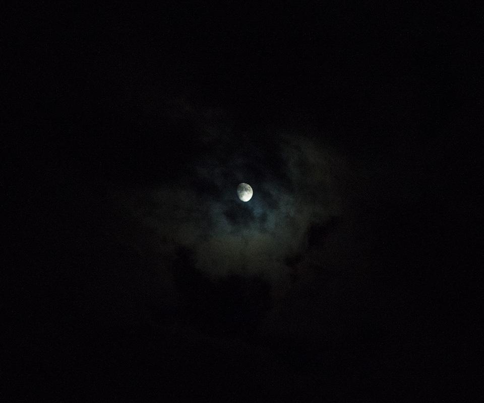 Dark Moon by Kdv42