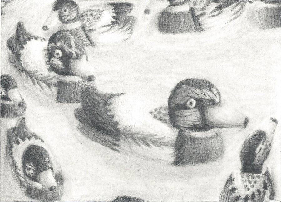 Wooden Ducks by KeyboardingChihuahua