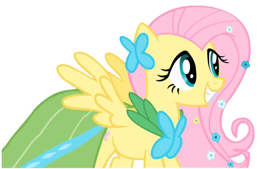My Little Pony Fluttershy Dress Www Imgkid Com The