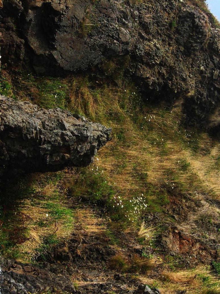 Rocky Cliff 1 by pricecw-stock