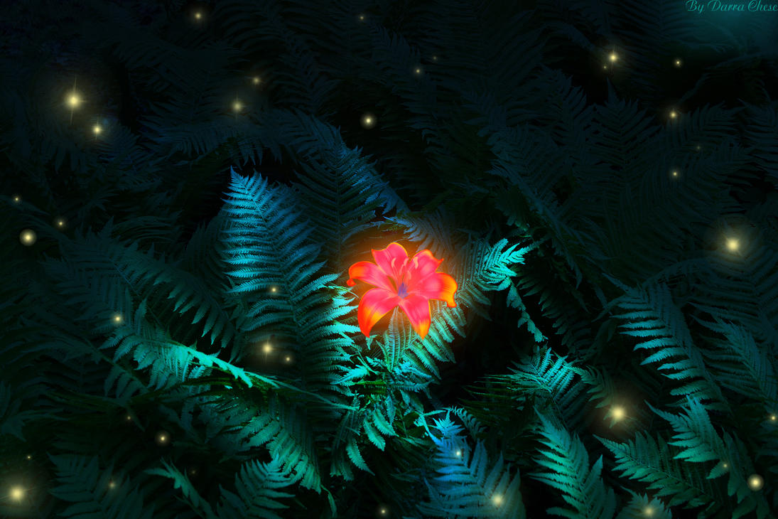 fern flower by DarraChese