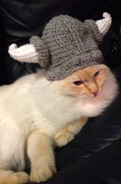 Viking Cat Hat by Vernoona on deviantART