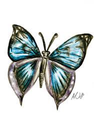 Blue Butterfly by AmyNoelly