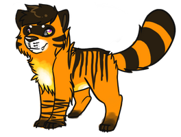 Tiger Racoon Auction adopt CLOSED by SpunkyAdopts