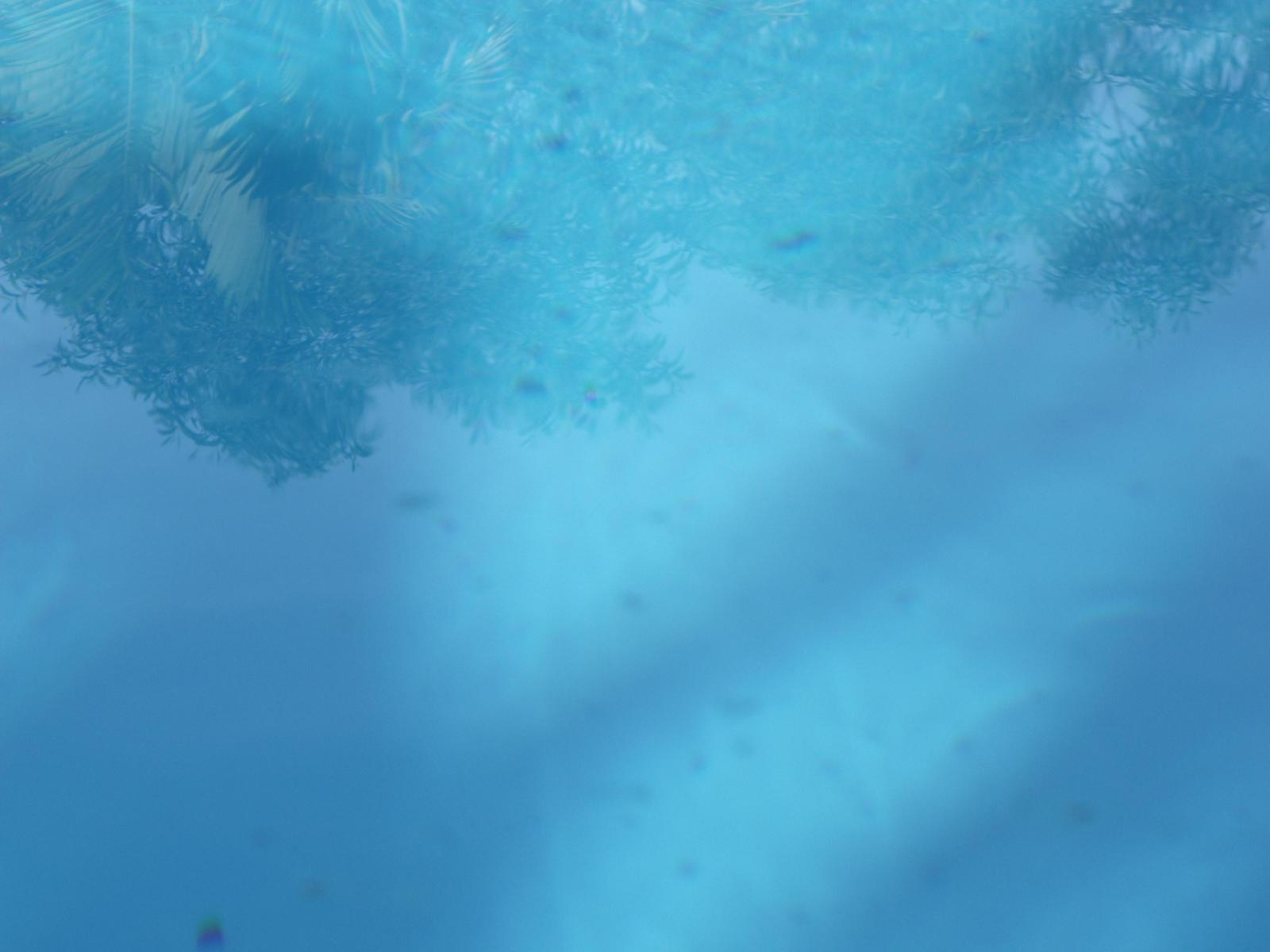 Underwater Texture Stock By Bhcgraphics On DeviantArt