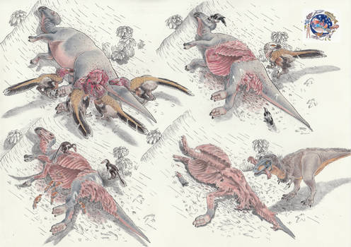Here's what happens after a hadrosaur dies