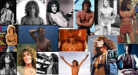 CHEST: A Roger Daltrey Collage