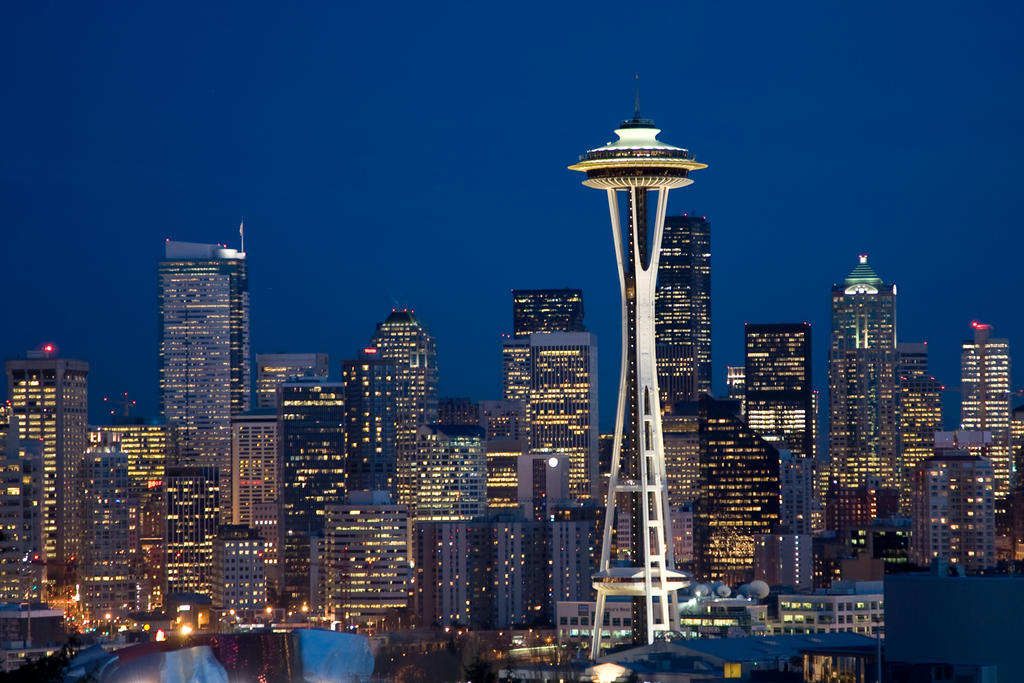 Seattle City Lights 1 by photoboy1002001