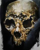 Acrylic Skull Study by Jessica-Gruesome