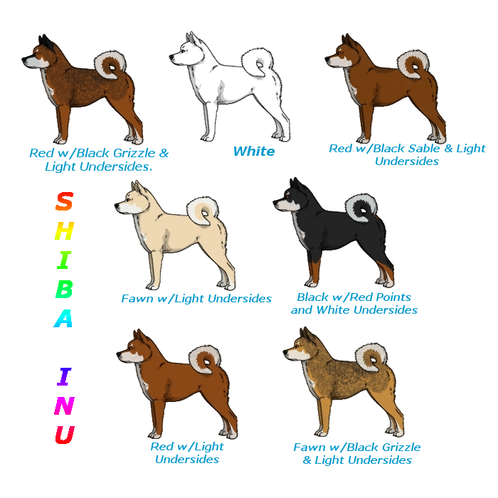 Walking Dog Japanese Emoticon