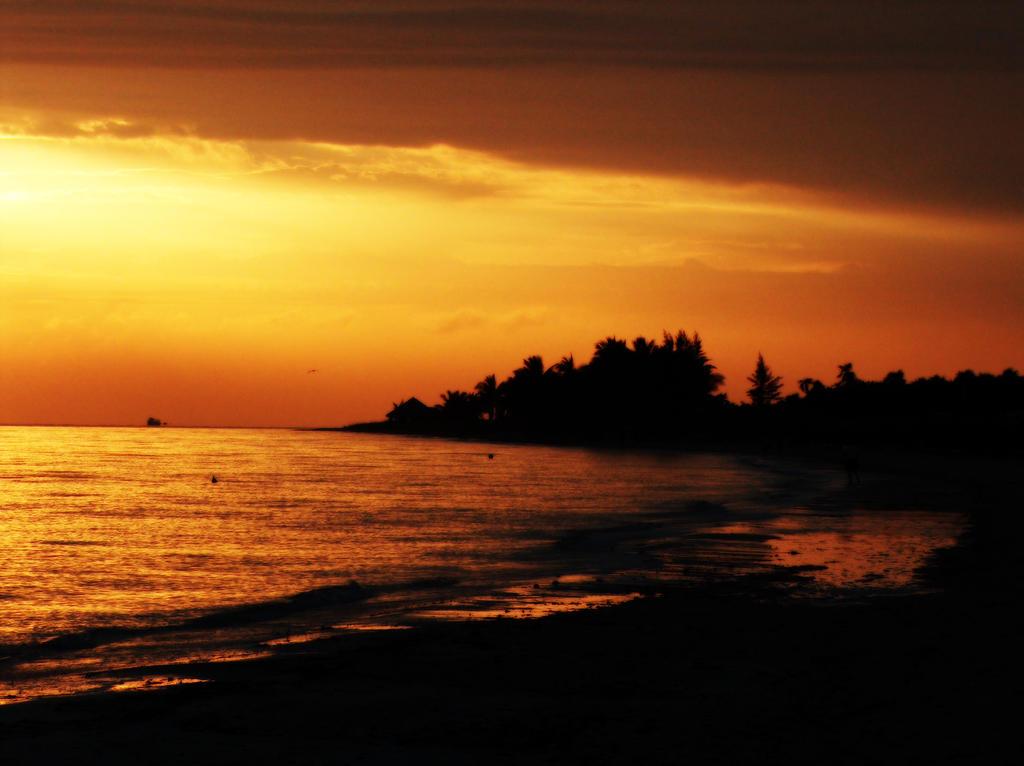 Sunrise 3 by letinhastock