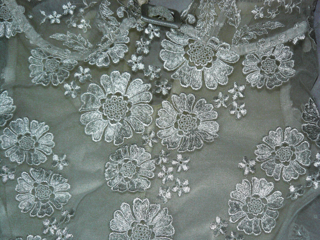 Lace Texture 2 by letinhastock