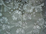 Lace Texture 2