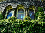 Cinderela Window