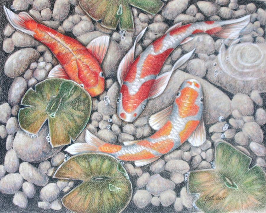 Koi pond 2 by katlewing on deviantart for Koi fish pond help